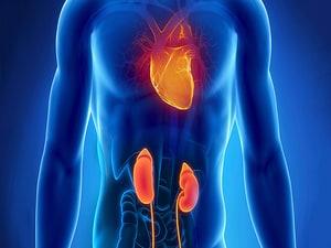 Dapagliflozin's CKD Performance Sends Heart Failure Messages